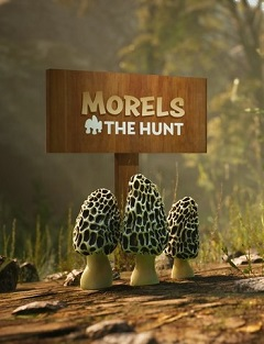 Постер Morels: The Hunt